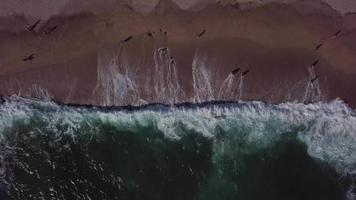 Drone ascending from beach with waves in 4K