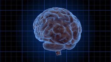 un cerebro humano gira sobre una cuadrícula azul