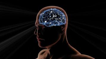 3D Animation of a Male Head and Brain Rotating with Light Effects
