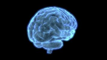 má recepção hud elemento de um cérebro humano holográfico girando