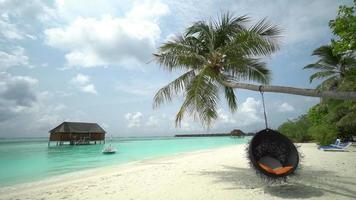 Beautiful tropical beach at the Maldives Island video