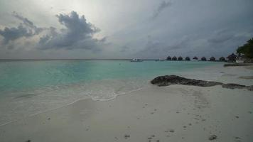 Tropical Beach at Maldives Island video