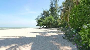 prachtig tropisch strand