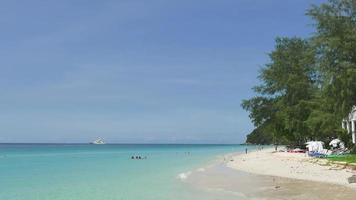 praia tropical com pessoas mergulhando