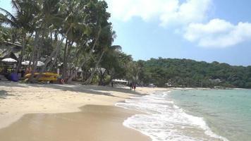 persone che camminano sulla sabbia di una spiaggia tropicale video