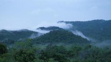 montagna nebbiosa della foresta pluviale