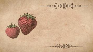 plantilla de receta de fresa video