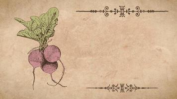 plantilla de receta de nabo