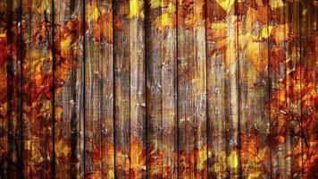 fundo de folhagem de outono