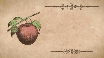 plantilla de receta de manzana video