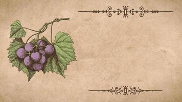 plantilla de receta de uvas