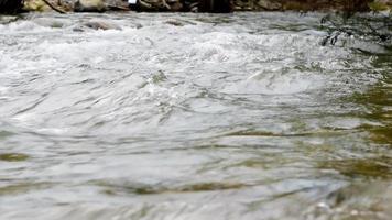 el agua del río video