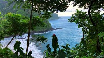 Küstenansicht der Klippe und des Ozeans in Hawaii 4k