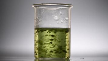 pesquisa de biocombustíveis de algas video