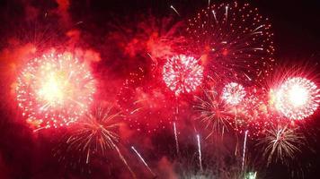 bela exibição de fogos de artifício coloridos à noite video