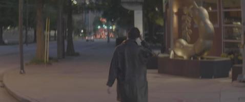 Crossing the Street video