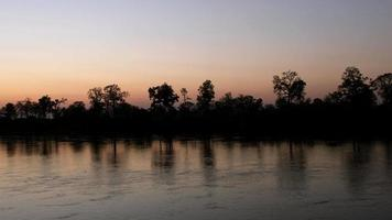 Trees silhouettes during sunset on river