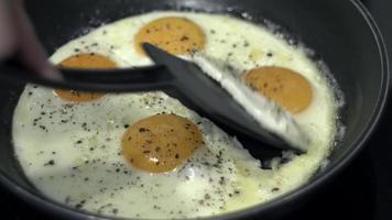 ovos estranhos video