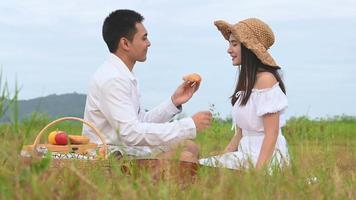 Asian Young Couple Having a Picnic on a Green Meadow