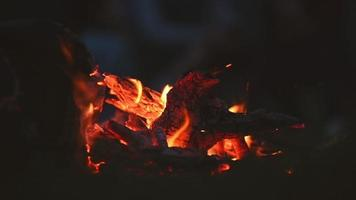 fogueira no escuro video