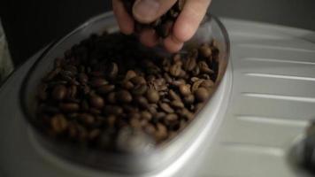 mãos tocando grãos de café