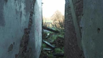 caminando entre paredes video
