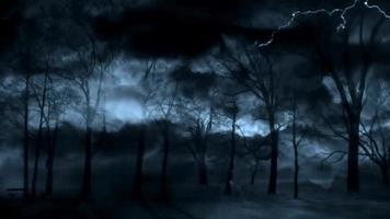 misterio y espeluznante bosque oscuro con rayos y nubes en movimiento