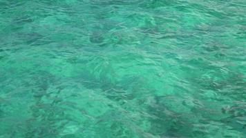 água límpida azul verde video