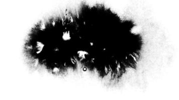 gran gota de tinta negra