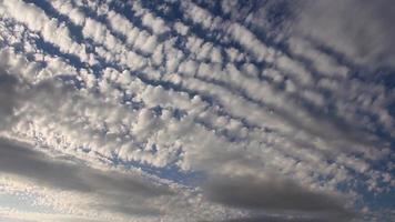 Altocúmulos nubes en el fondo de un cielo despejado video