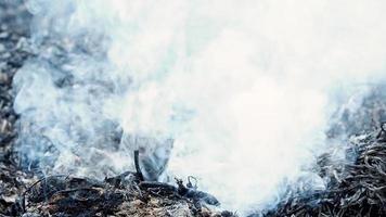 humo saliendo de las cenizas ardientes