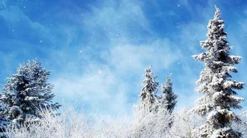 verträumte Fantasie Winter Hintergrund