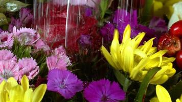 gocce d'acqua su fiori romantici colorati video