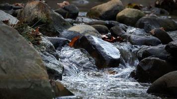 vista da cachoeira na natureza video
