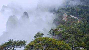el famoso paisaje de huangshan, china. video