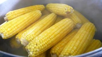 gelber Mais in kochendem Wasser