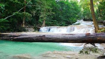 cascadas hermosas en la hermosa selva tropical.
