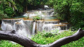 hermosa cascada en el bosque