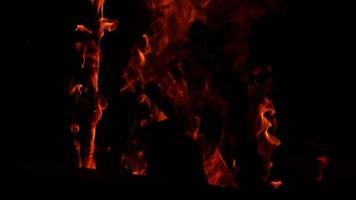 lenha queimando chamas no tempo frio video