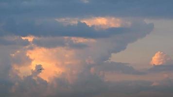 nubes al amanecer con gaviotas volando