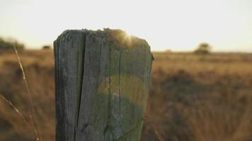 Exposing the sun from behind a wooden pole in a field