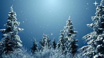 árvores de inverno e estrelas cadentes