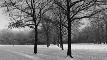 weiche Winterhintergrundschleife