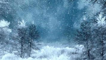 loop de fundo de inverno video