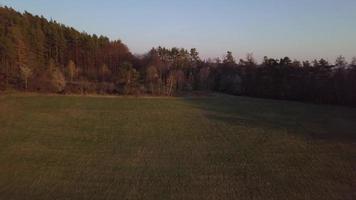 sobrevôo aéreo no campo da primavera em 4k