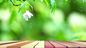 White Moke blossoms in garden with abstract wood floor