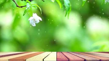 Flores blancas moke en jardín con piso de madera abstracto
