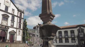 câmera lenta de uma fonte na madeira, portugal. video