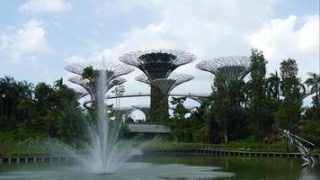 fonte com bosques de árvores em cingapura