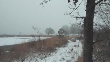 um ambiente de inverno criando o silêncio final video